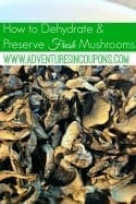 How To Dehydrate & Preserve Fresh Mushrooms