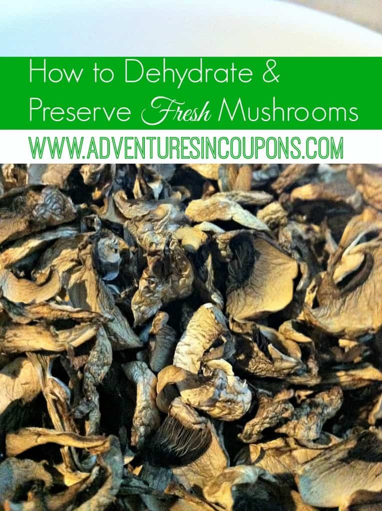 I picked up some mushrooms on clearance and needed to preserve them so I didn't lose them! Learn how to easily dehydrate mushrooms so you can preserve them for longer!