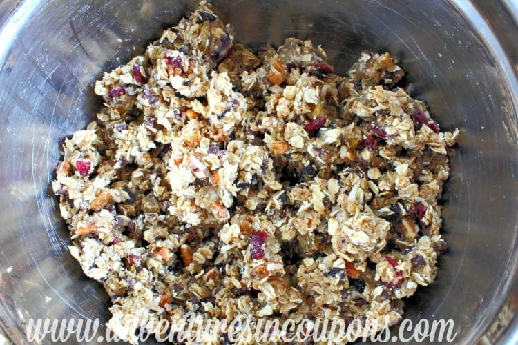 oatmeal-cookie-fruit-nut-bars3