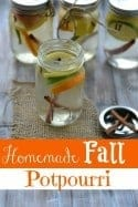 Homemade Fall Potpourri