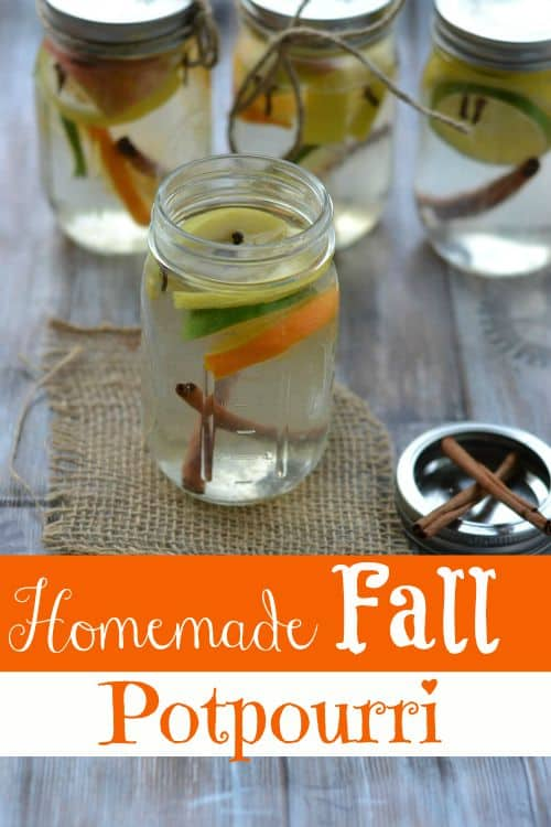 Skip the canned stuff this fall and go with this all natural, budget friendly homemade fall potpourri instead! It's the only homemade air freshener recipe you'll ever need for fall!