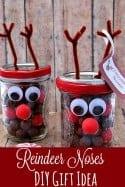 Reindeer Noses DIY Gift Idea