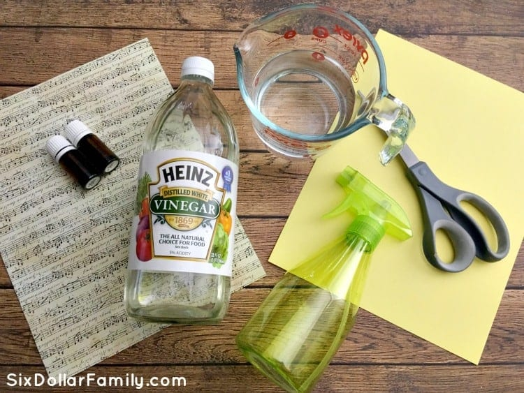 diy-all-purpose-cleaning-spray-ingredients