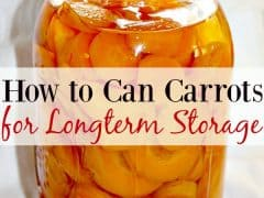 How to Can Carrots for Longterm Storage
