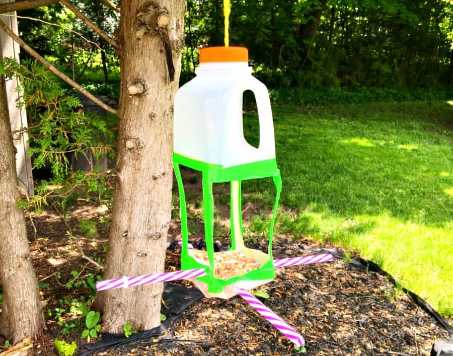 upcycled-milk-jug-bird-feeder-fb