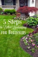 5 Landscaping Tips for Beginners