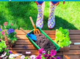Landscaping Ideas for Beginners - Learn how to landscape your yard with these easy landscaping tips for beginners! Your has never looked as good as it will after these landscaping ideas!