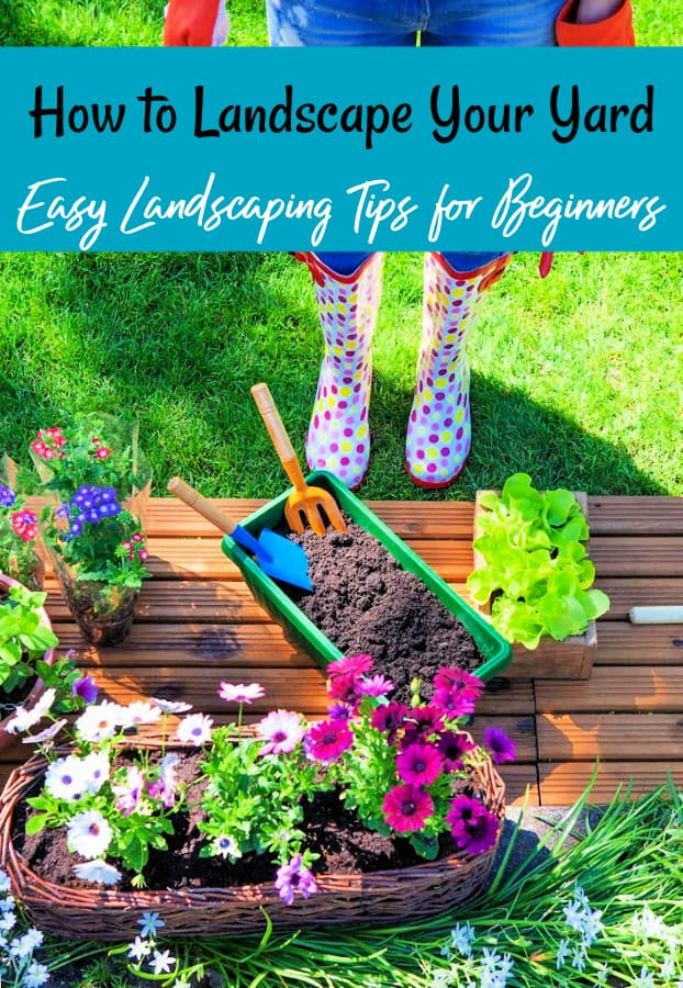 Delightful Landscaping Ideas For Beginners   Learn How To Landscape Your Yard With  These Easy Landscaping Tips