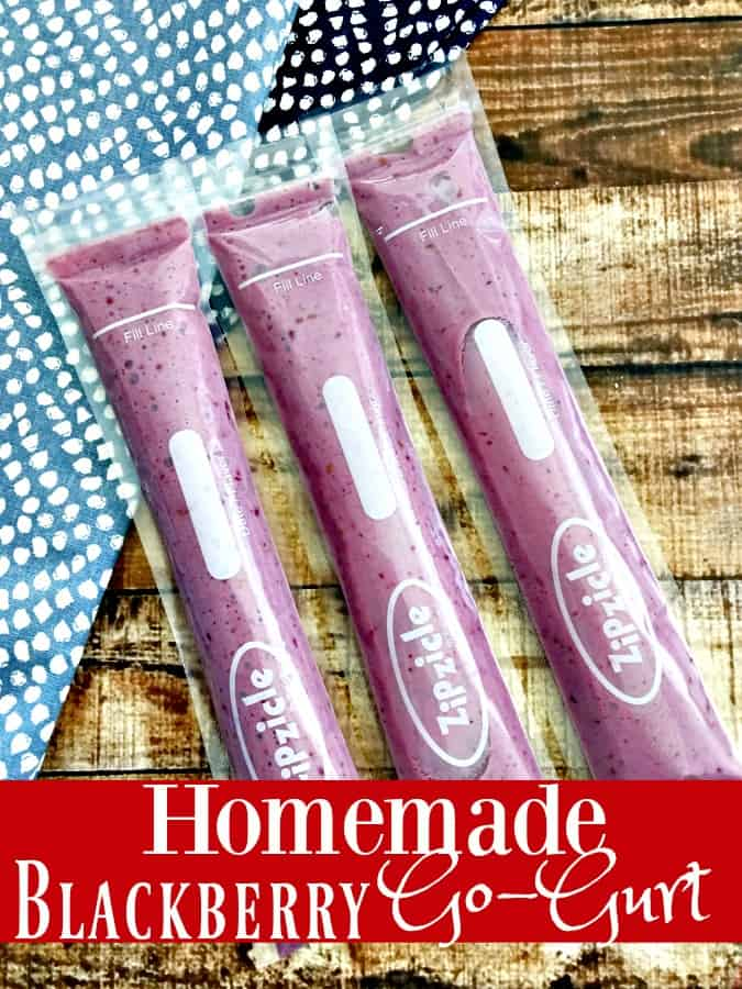 Tired of spending so much for those yummy Go Gurt snacks that your kids love? This Homemade GoGurt recipe is just what you need! Your snack recipes will never be the same again!
