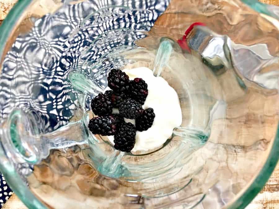 snack-recipes-homemade-go-gurt-recipe-1