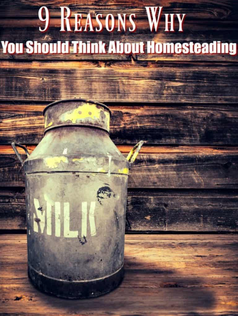 On the fence about starting a homestead? Take a look at these 9 reasons you might want to homestead! Yes, it's hard work learning how to homestead, but the homestead life is a great one that you might enjoy! Let me show you why!