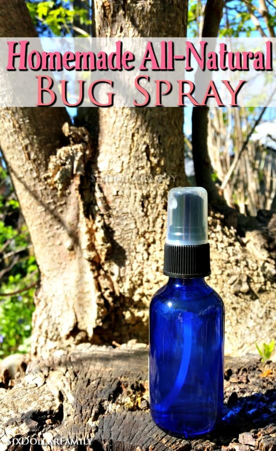 Homemade All-Natural Bug Spray - Keep summer pests away with this DIY bug spray! It's all-natural, budget friendly and works like a charm!