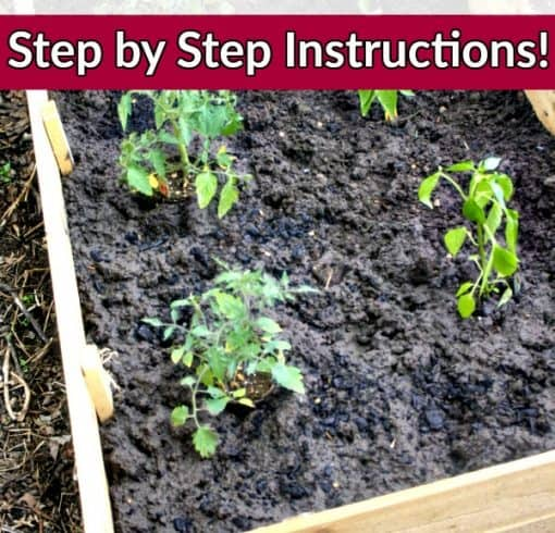How to Build DIY Raised Bed Garden Beds