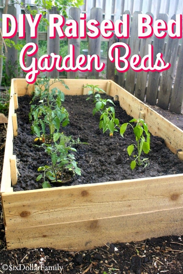 DIY Raised Bed Garden Beds - Ready to start your garden? These super simple DIY Raised Bed Garden Beds make it easy! Build and plant in the same day!
