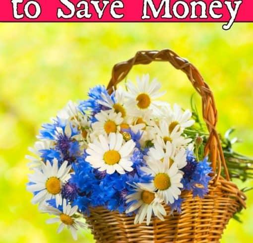Ways to Save Money – 23 Ways to Live Simply to Save Money