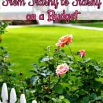 Landscaping Tips for Beginners – How to Take Your Yard from Trashy to Flashy on a Budget