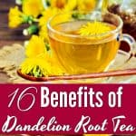16 Benefits of Dandelion and Dandelion Root Tea
