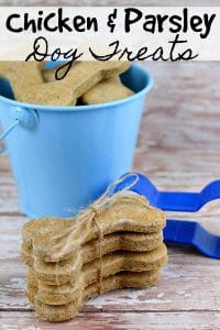 Homemade Chicken Dog Treats - Doggo need a treat? These homemade dog treats are perfect! They're super simple to make, all-natural (aka healthy for your pet!) and have an amazing chicken and parsley flavor your pup will love!