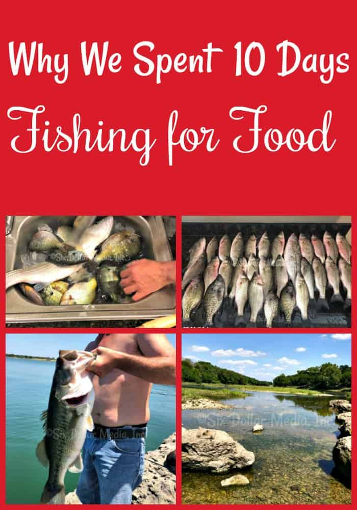 Why we went fishing for food (and how much we saved) - Have you ever thrown out a fishing line in order to feed your family? We do! Find out why we went fishing for food 10 days in a row and how much money we saved doing so! Fishing is a long lost skill, but one that can save you BIG!
