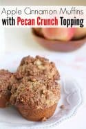 Apple Cinnamon Muffin Recipe { with a Pecan Crunch Topping Recipe }