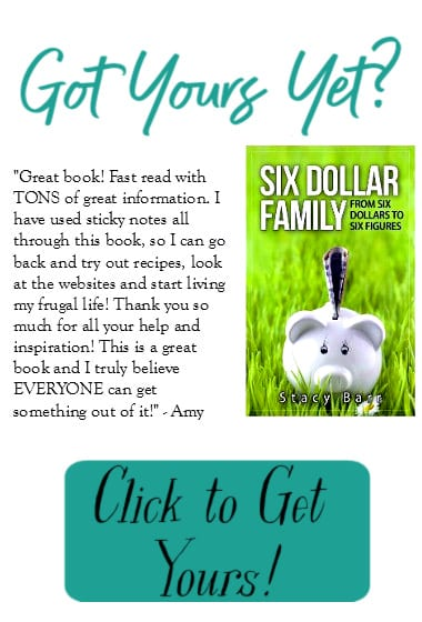 Order your copy of the Six Dollar Family Book